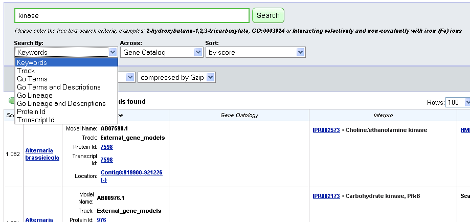 screenshot of search